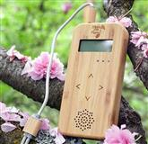 Bamboo B Device - Music of the Plants