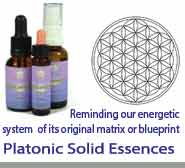 Platonic Solid Essences