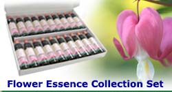 Flower Essence Collection Set