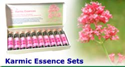 Karmic Flower Essence Set