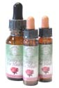 Rose Flower Essences